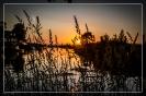 Ribe å ved solnedgang