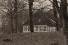 DSC_0016 huset i skoven 1200px